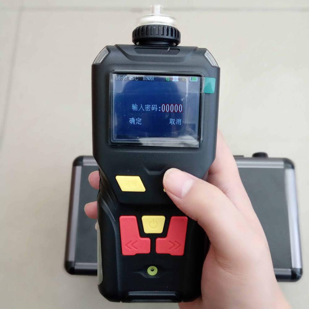 防爆型便携式氩气检测报警仪TD400-SH-Ar气体纯度测定仪