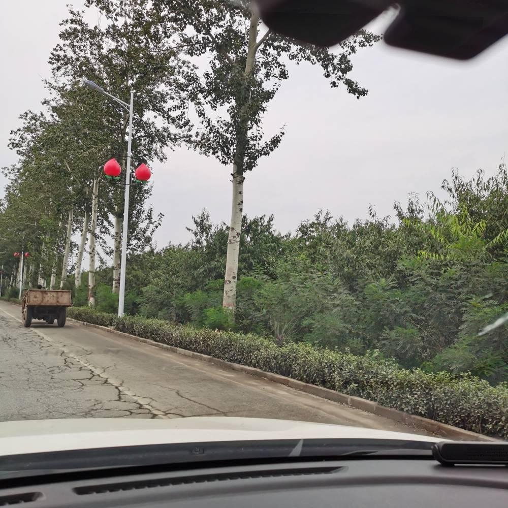 廠家直銷燈桿 路燈 高桿燈 新農村建設用30Wled太陽能路燈