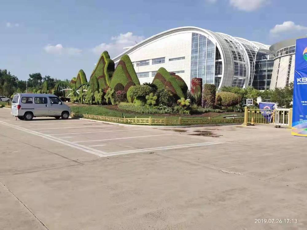 四川巴中立體綠雕圖片 ,動車造型仿真植物綠雕制作
