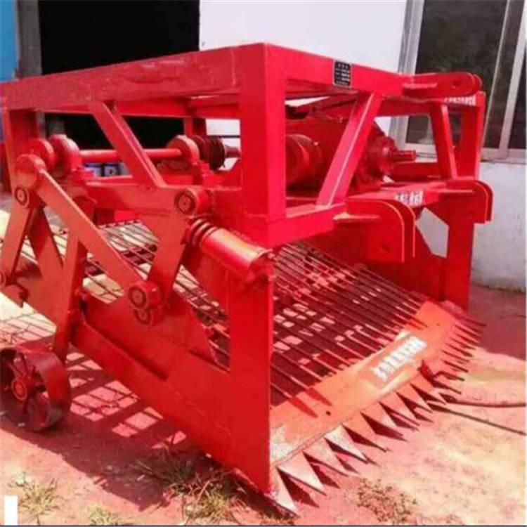 蒲公英收获机 链条快速挖药机拖拉机带根茎药材起挖机板蓝根收获
