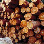 供应木材防霉剂 木材防兰变剂 木材防蓝变剂