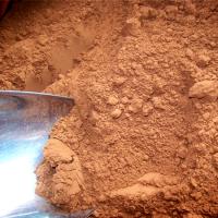 山東靈芝菌種養殖基地 泰山赤靈芝吃法康瑞靈芝