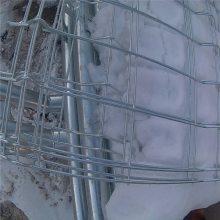 体育场防护网 铁丝围栏网批发 路边护栏网