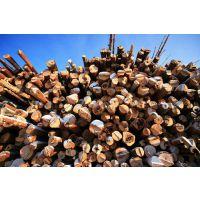 广州深圳温州港非洲红檀进口报关代理丨木材清关流程丨原木资料所需清关时间