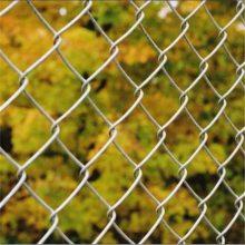 旺来体育场围栏网厂 市政围栏网 勾花网栅栏