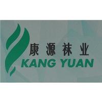 广州鑫莎袜业有限公司