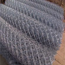 电镀勾花网 河堤防护网 旺来勾花网生产商