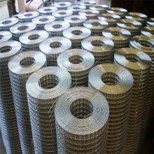 热镀锌电焊网厂家 工艺品电焊网 钢丝网价格