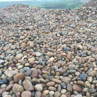 顺永原生态卵石 水处理,河北工艺品卵石,