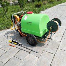 300升推车打药机 野外除草消毒喷药机汽油高压喷雾器
