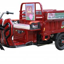 丰收干电三轮电动车,客运载货电动三轮车,家用两便电瓶三轮车,60km,500kg