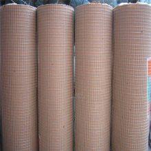 电焊网生产 厂家电焊网 镀锌方孔网