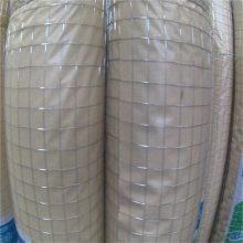 养鸡围栏网 镀锌铁丝网 白色围栏网