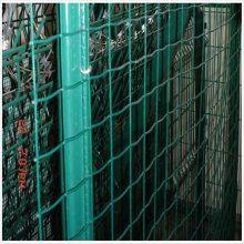 塑料皮铁丝网 养鸡网厂家 铁丝网价钱