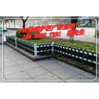 安徽pvc护栏 安徽花坛PVC别墅护栏 安徽pvc草坪护栏