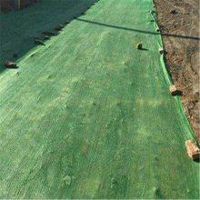 2针防尘网厂家 防晒遮阳网 安全绿化网