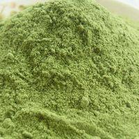 绿色有机大麦苗粉碱性***大麦若叶青汁粉礼盒厂家直销