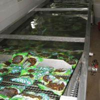 康汇低温巴士杀菌流水线 小型水浴式灭菌机厂家 酱菜果酱加工设备