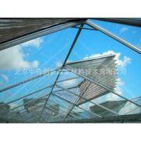 温室天窗折叠防虫网 尼龙防虫网