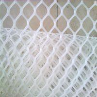 纯料塑料平网 养殖塑料网片 全新料养鸡平网