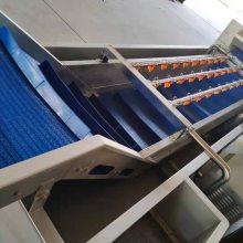 供应广西净菜加工生产线RY-5200