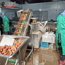 红薯地瓜脱皮机/土豆马铃薯全自动削皮设备/支持加工定制/适用广泛