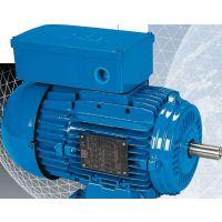 Hillesheim 电机 H8001-010-12-12-06