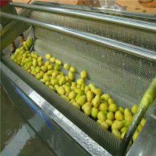 供应不锈钢毛刷去皮机 土豆毛刷去皮清洗机 明敏牌大姜脱皮机自动螺旋出料