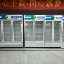 金宏通商用冷藏展示柜 全通制冷饮料展示柜 饭店夏季必备啤酒冷藏柜