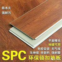 工厂直接供应室内竹木纤维防水防火地板石塑pvc木塑地板