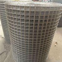 畜牧养殖铁丝网 铁丝网产品 镀锌电焊网