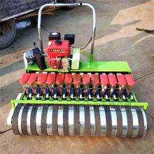 汽油自走式青梗菜精播机 小型蔬菜精密播种机 大棚快菜播种机厂家直销