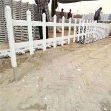 绿化带隔离草坪护栏 公园塑料护栏 小区花园PVC栅栏