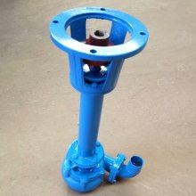 立式污水泵 2寸排水泵 铸铁耐磨 鱼塘清淤机 中泉定制加长铰刀污水泵 厂家供货快