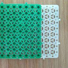 郑州排水板规格型号全 郑州塑料排水板高度厚度可定做