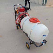 DYJ养殖场手推消毒机 汽油拉管喷雾器 圆桶大容量汽油打药机