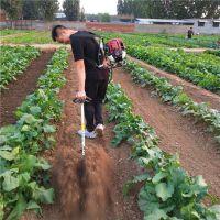 多功能施肥机播种机中耕机/背负式除草机报价/背负式除草机