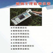大米外观品质检测仪SDMW-A