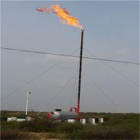 放空火炬点火器 煤气放散火炬自动点火系统