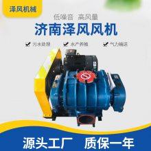 ***小型高压罗茨鼓风机 曝气供氧增压罗茨风机品质保证