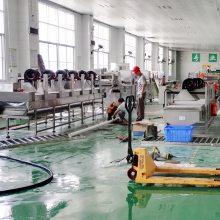 供应祥九瑞盈蔬菜加工生产线RY-4200103
