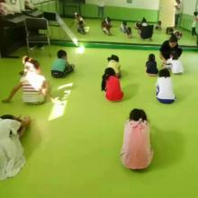 河北欧宝瑞舞蹈地胶/pvc舞蹈地板厂家/PVC舞蹈塑胶运动地板