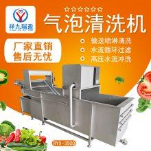 祥九瑞盈气泡蔬菜清洗机 商用厨房蔬菜清洗机 多功能喷淋式果蔬菜清洗机无刀化设备