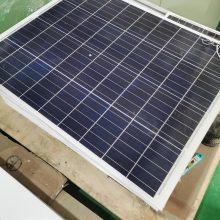 太阳能监控 量大从优 太阳能供电监控喇叭 英光