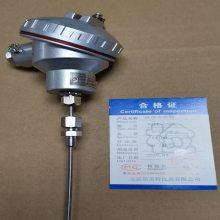铠装热电阻WZPK2-336,Pt100,L=300mm,∮6,M16*1.5,配活动卡套螺纹接头