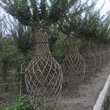 紫薇亭子批发基地 价格的多少紫薇花瓶字体造型基地 发往贵州重庆山东