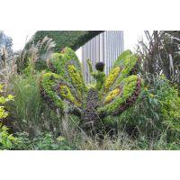 定制仿真植物真植物动物绿雕,名族自由爱国仿真绿雕主题