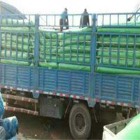 矿场盖土网 工地绿化网 农用遮阳网