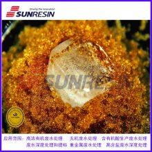 含酚有机酸废水处理用树脂 西安蓝晓科技研发生产