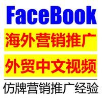 Facebook海外营销推广视频教程 FB社交网络营销课程 国外网赚教程